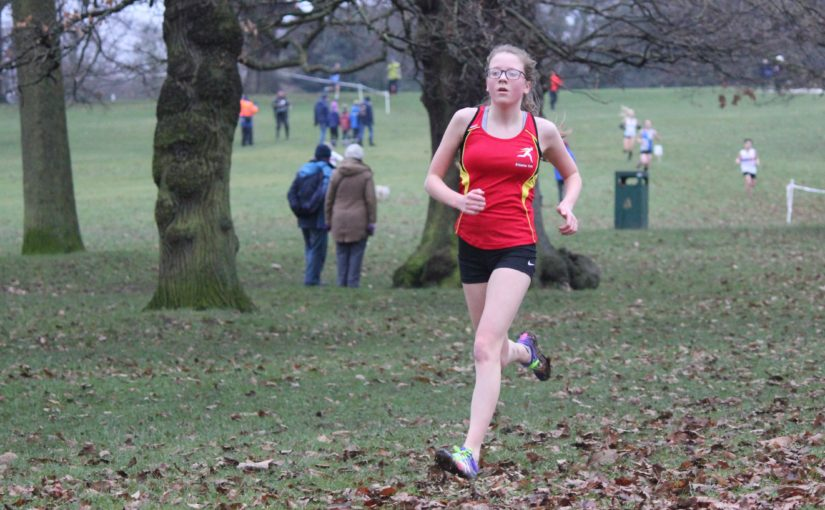 Match Report – North Mids XC League – Wollaton Hall