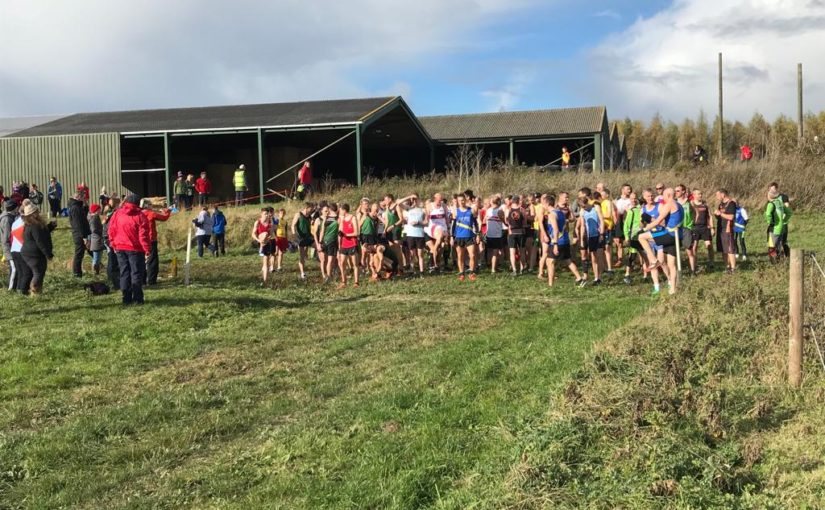 Lincs XC  Match 2 Report –  GAC Young Athletes Shine