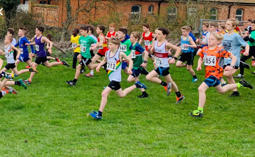 Match Report – National Primary Cross Country Final – Prestwold Hall