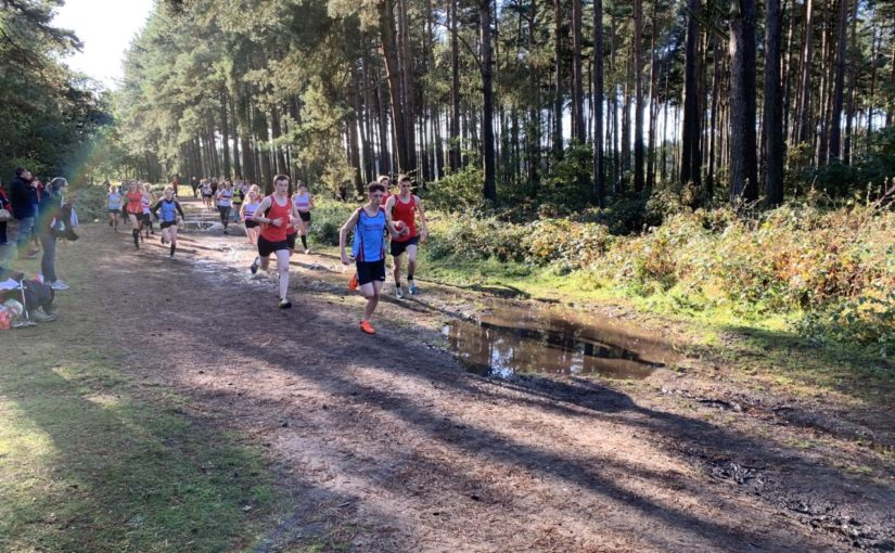 October Cross Country Report